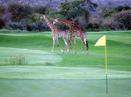 Leopardcreek Golf