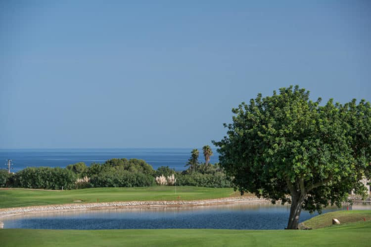 Vall D'Or Golf Course