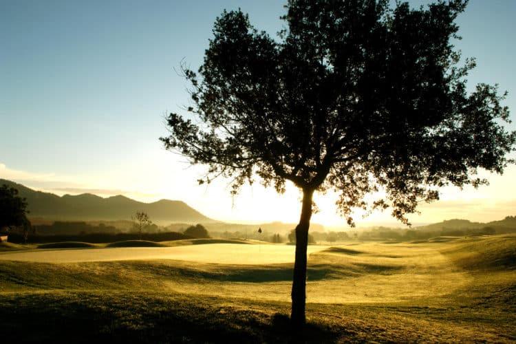 Pula Golf