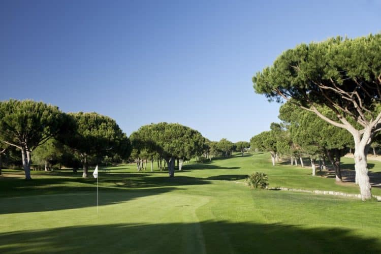 Dom Pedro Golf Pinhal Golf Course