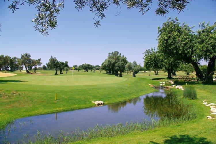 Quinta de Cima Course