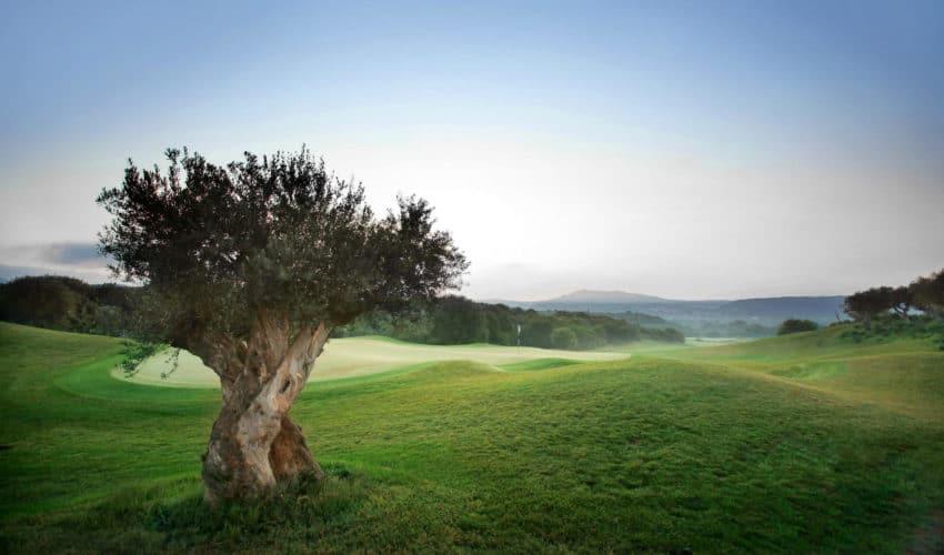 Costa Navarino Golf